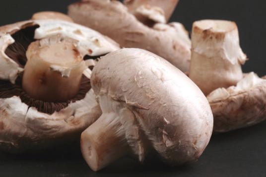 mushroom-dreamstimefree_60777